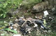 रामपुर में बस गिरी ,29 यात्रियों की मौत कई घायल